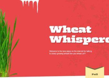 Degordian pozvao ljude širom svijeta da postanu Šaptači pšenici 1