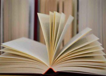 Deseti natječaj Plaktivat objavio temu: Dopusti knjizi da te odvede