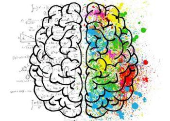 Fusing data and creativity boosts revenue